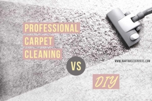 Do It Yourself VS. Professional Carpet Cleaning Service. WhatsApp Image 2020 08 25 at 5 compressed 300x200